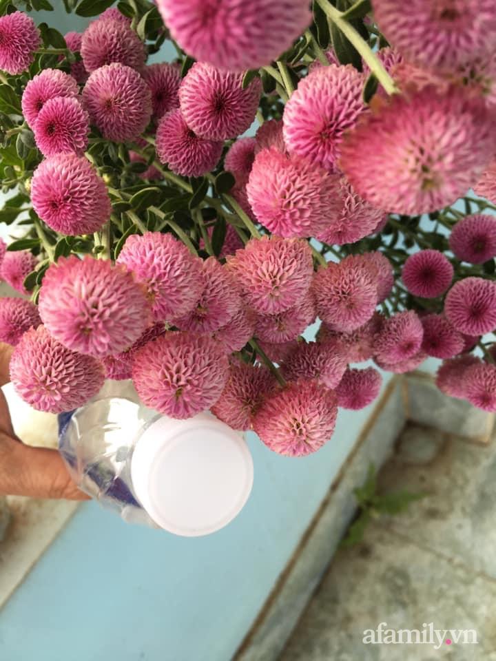 Ngôi nhà ngập tràn sắc màu hoa cúc đẹp lãng mạn của cô giáo phố núi Sơn La - Ảnh 12.