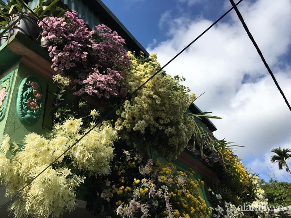 Ngôi nhà ngập tràn sắc màu hoa cúc đẹp lãng mạn của cô giáo phố núi Sơn La - Ảnh 1.