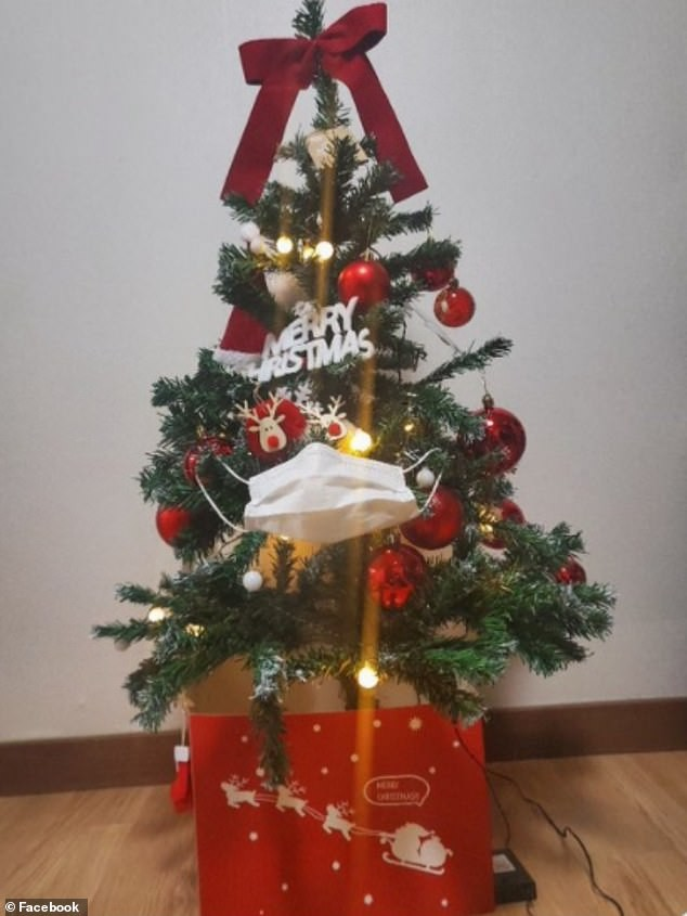 Treo khẩu trang, giấy vệ sinh lên cây thông Noel vì 'ám ảnh' với COVID-19 - Ảnh 2.