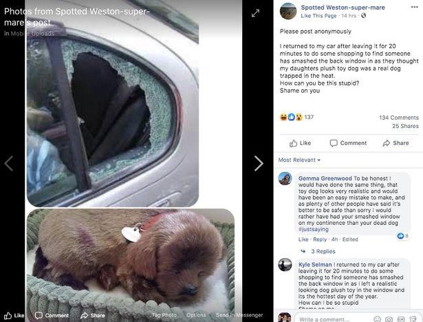 Thấy chó con bên trong xe, người đi đường đập cửa kính cứu con vật rồi chưng hửng với danh tính của nó, còn bị chủ nhân đăng đàn tố cáo - Ảnh 1.