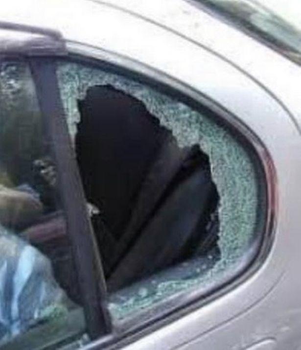 Thấy chó con bên trong xe, người đi đường đập cửa kính cứu con vật rồi chưng hửng với danh tính của nó, còn bị chủ nhân đăng đàn tố cáo - Ảnh 2.