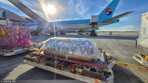"""Dân mạng """"lùng sục info"""" YouTuber tự nhận là người nhà, đến sân bay quay lại hồ sơ thân nhân cố nghệ sĩ Chí Tài  - Ảnh 2."""