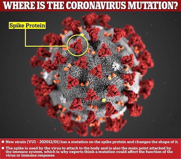 Biến thể mới của virus corona đang lây lan quá nhanh - Ảnh 1.