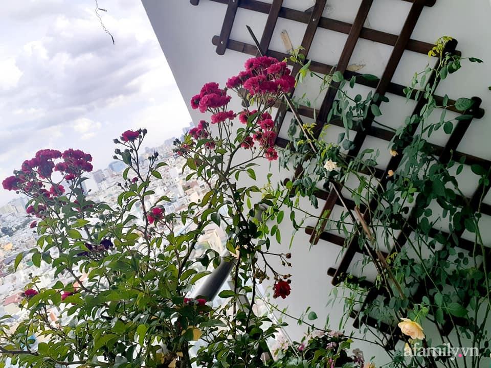 Bà mẹ trẻ Sài Gòn biến ban công trống trơn thành khu vườn ngập tràn hoa lá chỉ với 2,2 triệu đồng - Ảnh 4.