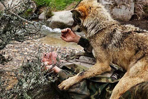 """Câu chuyện có thật về """"cậu bé rừng xanh"""" được bầy sói nuôi dưỡng trong 12 năm và cuộc sống sau khi tái hòa nhập cộng đồng con người - Ảnh 2."""