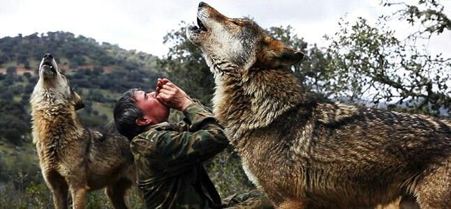 """Câu chuyện có thật về """"cậu bé rừng xanh"""" được bầy sói nuôi dưỡng trong 12 năm và cuộc sống sau khi tái hòa nhập cộng đồng con người - Ảnh 4."""