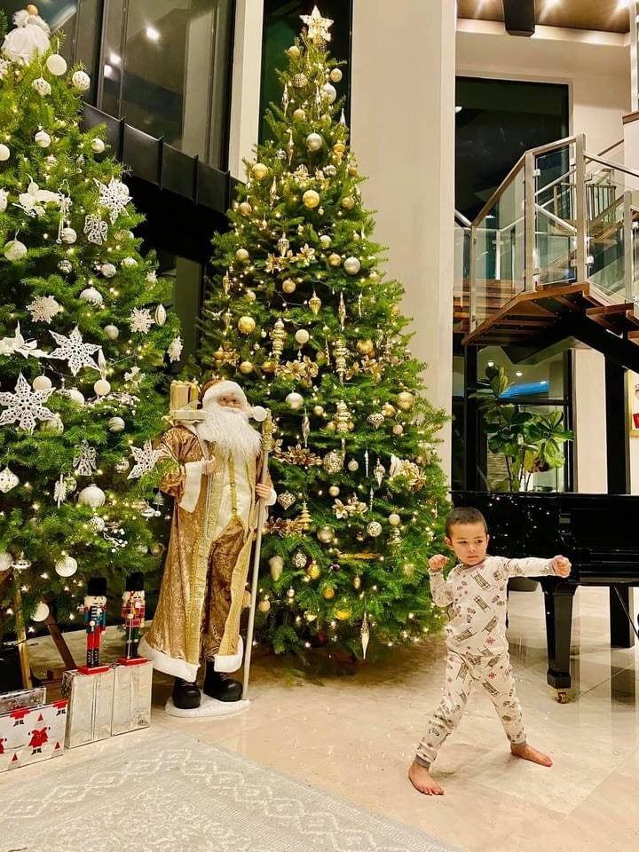 """Sao Việt trang trí nhà sớm trước thềm Noel: riêng cây thông hoành tráng trong biệt thự """"triệu đô"""" của Cường Đô La khiếm dân tình """"ngã ngửa"""" - Ảnh 3."""