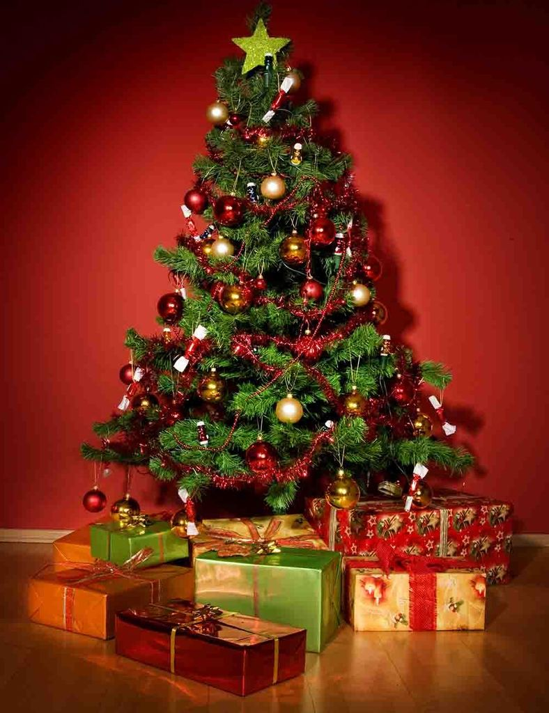 Giáng sinh tới gần: Tư vấn các sản phẩm trang trí cho cây thông đặt phòng khách tiết kiệm nhất, chi phí chỉ gần 450 nghìn đồng - Ảnh 2.