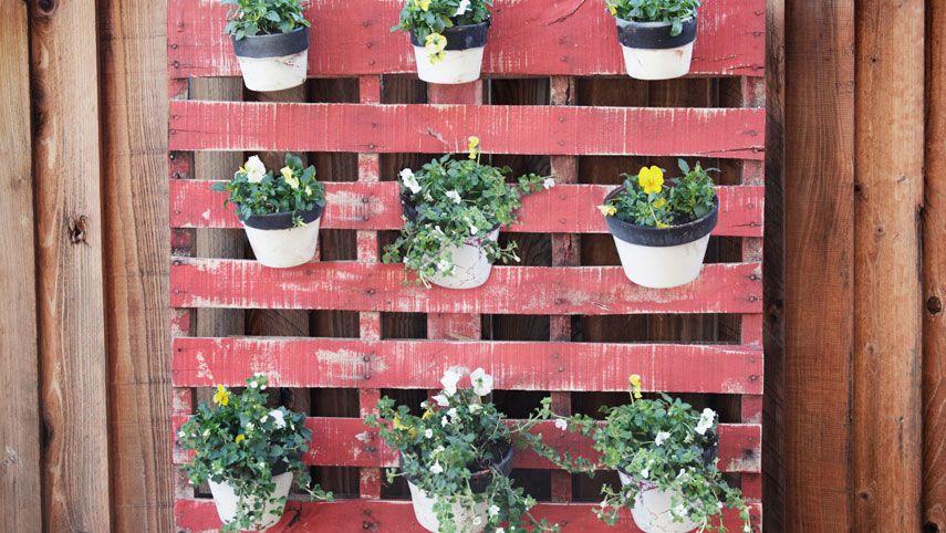 Những khu vườn thẳng đứng dễ thiết kế tạo màu xnh tươi mát cho ngôi nhà củ bạn - Ảnh 11.