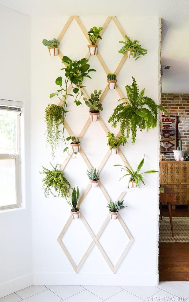 Những khu vườn thẳng đứng dễ thiết kế tạo màu xnh tươi mát cho ngôi nhà củ bạn - Ảnh 7.