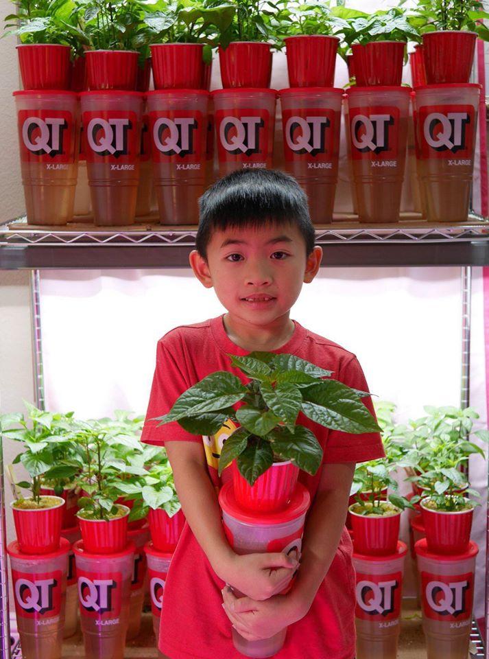 Khu vườn 1000m2 đủ loại rau Việt do con gái tặng mẹ trên đất Mỹ - Ảnh 17.