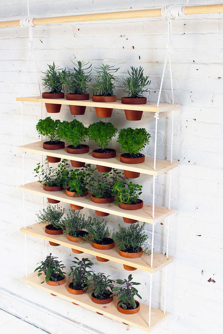 Những khu vườn thẳng đứng dễ thiết kế tạo màu xnh tươi mát cho ngôi nhà củ bạn - Ảnh 10.