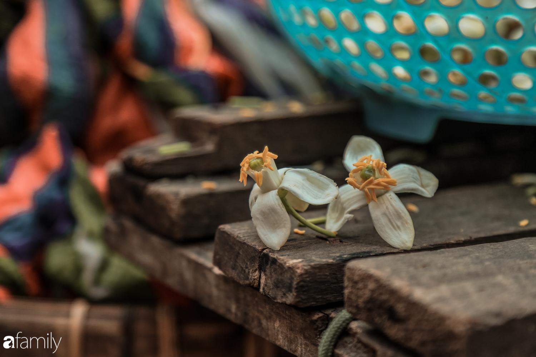 Cuối tháng Giêng, giữa phố phường Hà Nội bỗng bắt gặp hương bưởi, phả vào trong gió se - Ảnh 4.
