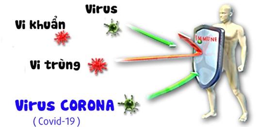 WHO nói về việc đổi tên dịch bệnh COVID-19, khiến nhiều người quan tâm - Ảnh 2.
