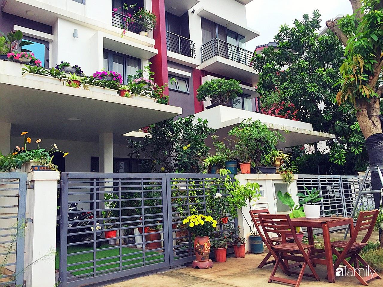 Không gian sống ngát hương bên khu vườn ngập tràn nắng ấm và rực rỡ sắc hoa ở Hà Nội - Ảnh 5.