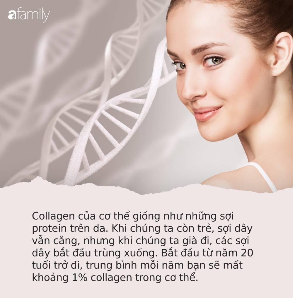 Phụ nữ ăn đều đặn 10 món này có thể kích thích cơ thể tự sản sinh collagen, giúp trẻ lâu, da đẹp và khỏe mạnh mỗi ngày - Ảnh 1.