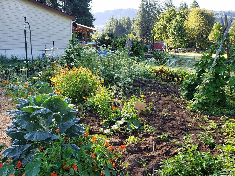 Cuộc sống hạnh phúc của mẹ trẻ xinh đẹp với công việc hàng ngày là chăm con và trồng rau quả sạch - Ảnh 8.