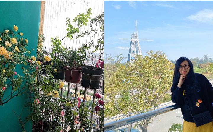Ban công 3m² phủ kín hoa hồng rực rỡ nhờ bàn tay đảm đang chăm bón hàng ngày của mẹ trẻ ở Hà Nội
