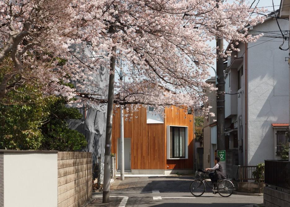 Căn nhà cấp 4 với thiết kế ấm cúng, lãng mạn bên cây hoa anh đào nở rộ - Ảnh 1.