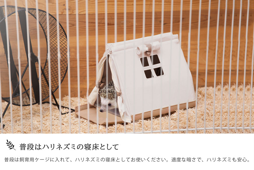 Túi đeo vai sành điệu: Sản phẩm mới nhất giúp chị em mang theo thú cưng tới mọi nơi, mọi lúc - Ảnh 4.