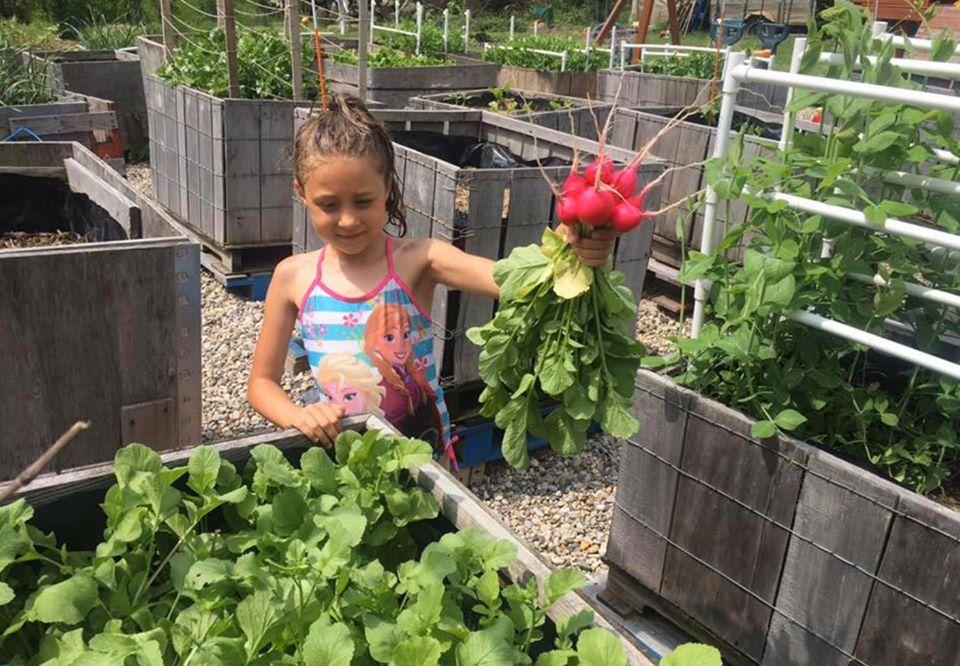 Khu vườn xanh tươi của ông bố cặm cụi trồng giúp 3 cô con gái xinh đẹp có thêm bài học hay về cuộc sống - Ảnh 11.