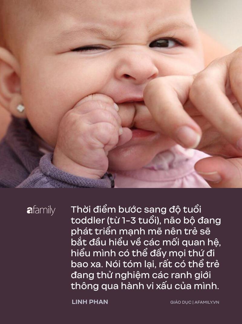 Trẻ em 1-3 tuổi rất hay đánh người, parent coach Linh Phan lý giải 9 nguyên nhân của hành vi bạo lực này - Ảnh 5.