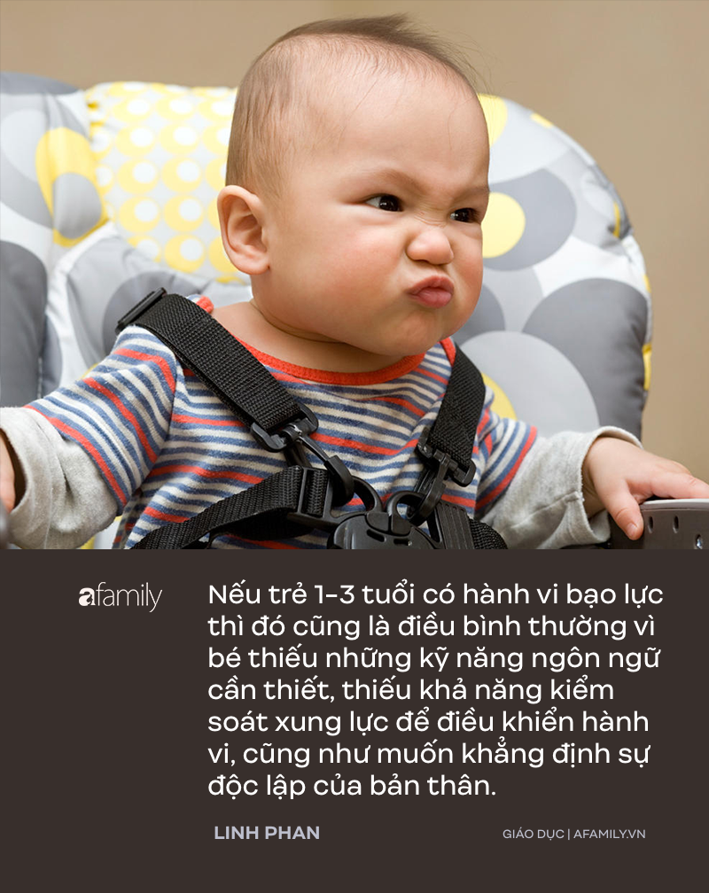 Trẻ 1-3 tuổi rất hay đánh người, parent coach Linh Phan lý giải 9 nguyên nhân của hành vi bạo lực này - Ảnh 3.