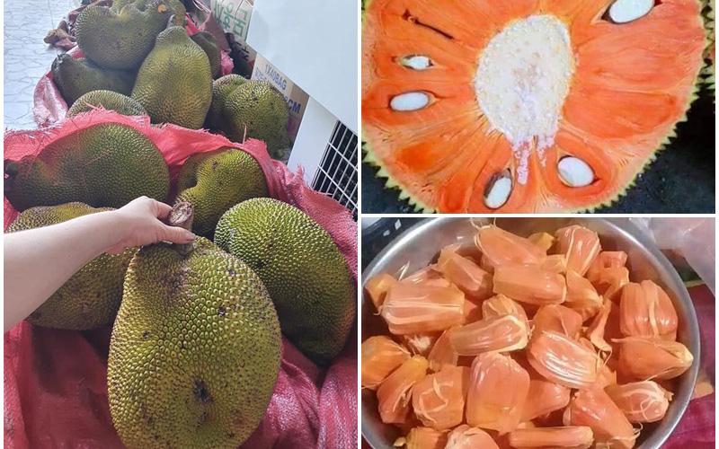 Lạ miệng mít ruột đỏ múi to dày, thơm ngọt có giá 120 ngàn đồng/kg vẫn hút khách sành ăn