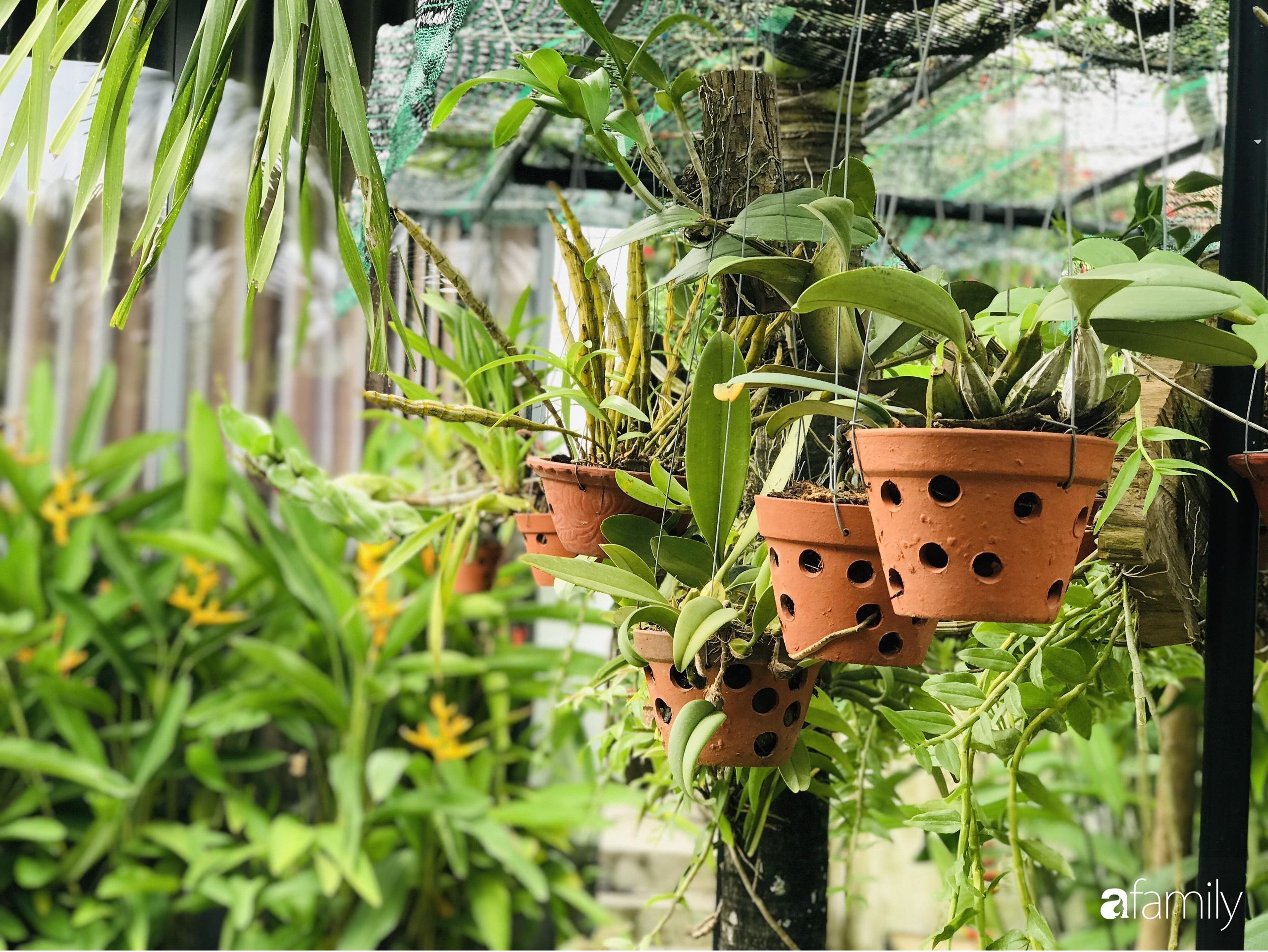 Chàng sinh viên kiến trúc tự decor vườn 200m² với cây xanh và ao cá cho gia đình 4 thế hệ ở ngoại ô Đà Nẵng - Ảnh 4.
