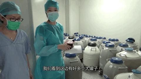 Xu hướng đông lạnh trứng của phụ nữ độc thân ở Trung Quốc: Chứa đầy trách nhiệm và tình yêu thương nhưng không được chấp nhận bởi quan điểm lỗi thời - Ảnh 3.