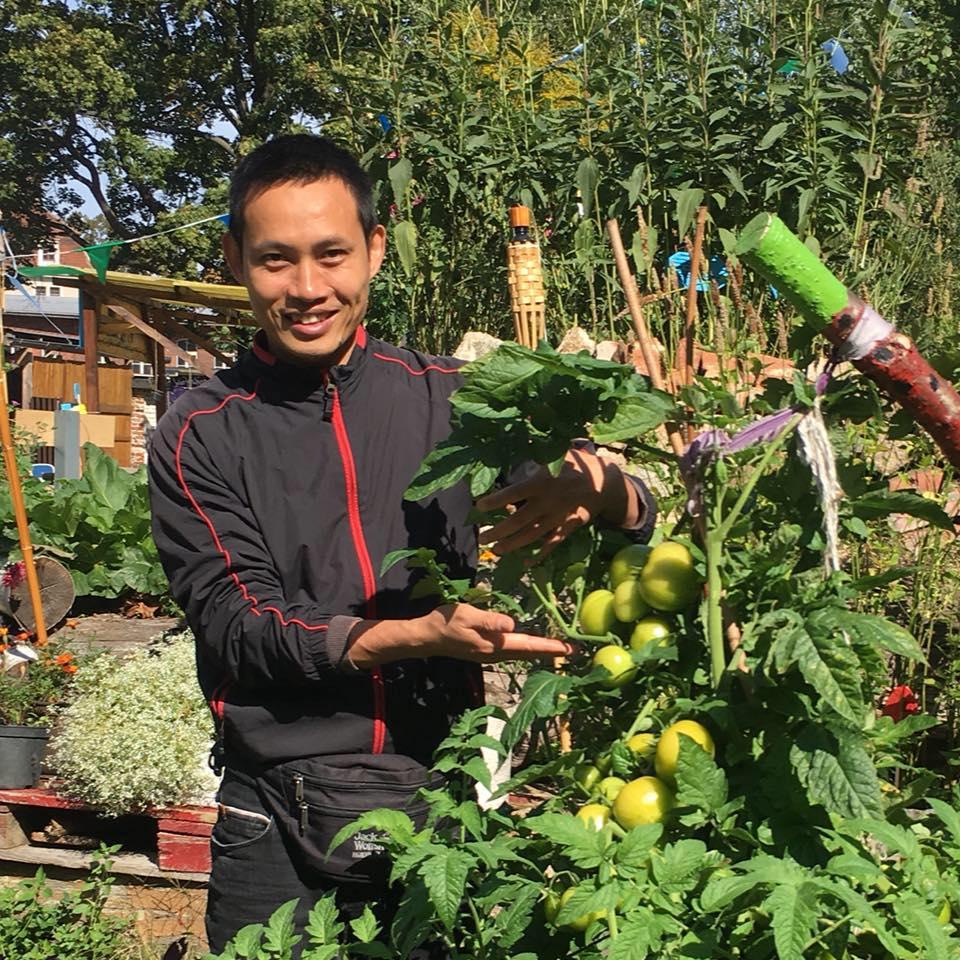 Chuyên gia trong lĩnh vực nhà vườn tại Hà Nội chia sẻ cách trồng rau đúng cách, đảm bảo nhà phố thoải mái rau sạch cho cả gia đình - Ảnh 3.
