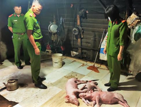 Bắt quả tang cơ sở mua lợn chết quay lên bán cho khách hàng - Ảnh 1.
