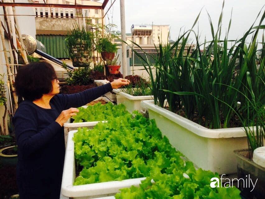 Ngắm căn hộ chung cư ngập tràn tình yêu thương và câu chuyện từ bàn tay chăm chút của người mẹ tảo tần tại Quảng Ninh - Ảnh 2.
