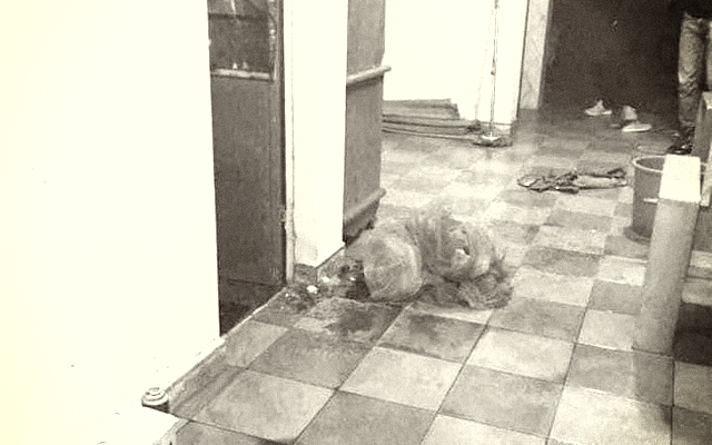 Hải Phòng: Điều tra vụ nữ sinh lớp 9 tử vong tại nhà với nhiều vết thương