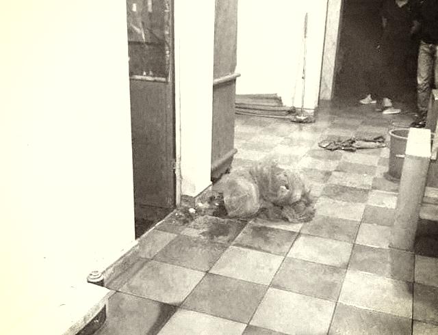 Hải Phòng: Điều tra vụ nữ sinh lớp 9 tử vong tại nhà với nhiều vết thương - Ảnh 1.