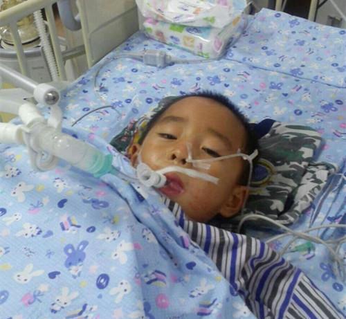 Con trai 12 tuổi đã mắc ung thư thận, bố mẹ ân hận khi biết nguyên nhân đến từ loại thực phẩm quen thuộc mà bé ăn quá nhiều