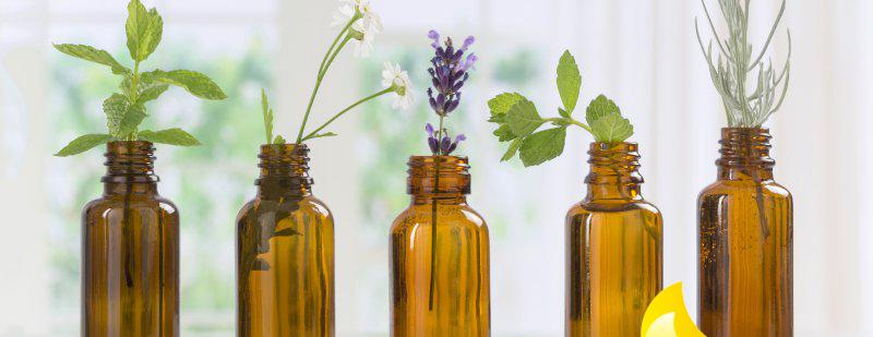 Cách sử dụng mùi hương tự nhiên vừa hạn chế virus vừa làm sạch nhà - Ảnh 4.