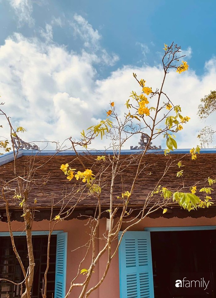 Ngôi nhà cấp 4 gần trăm năm tuổi bên cạnh khu vườn hoa hồng gói gọn những lặng lẽ, yên bình của xứ Huế mộng mơ - Ảnh 6.