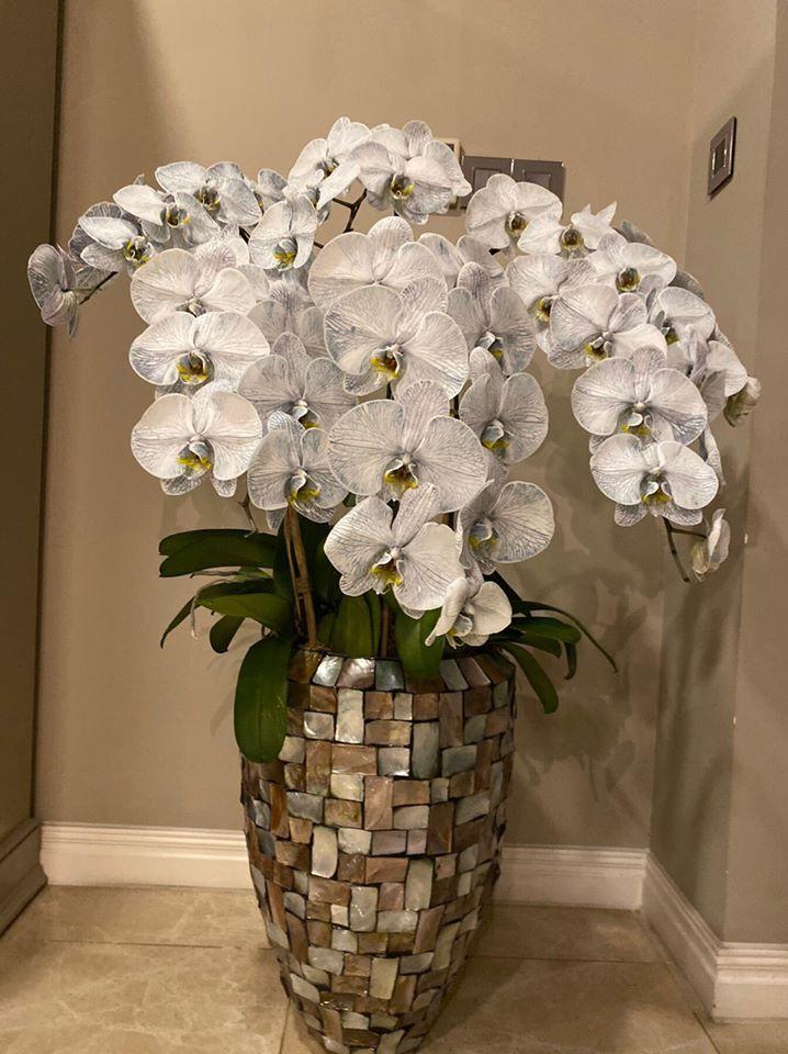 Biệt thự màu trắng siêu sang trồng nhiều hoa và cây xanh của Hoa hậu đền Hùng Giáng My - Ảnh 4.