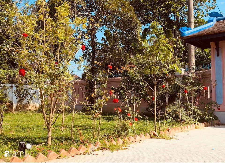 Ngôi nhà cấp 4 gần trăm năm tuổi bên cạnh khu vườn hoa hồng gói gọn những lặng lẽ, yên bình của xứ Huế mộng mơ - Ảnh 15.