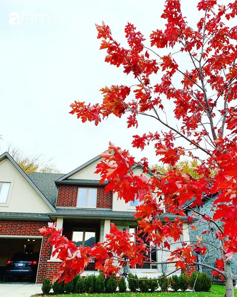 Mẹ Việt ở Canada khoe ngôi nhà đẹp như trong phim, thích nhất là căn bếp vừa đứng nấu cơm vừa ngắm trời mây cây cối - Ảnh 3.
