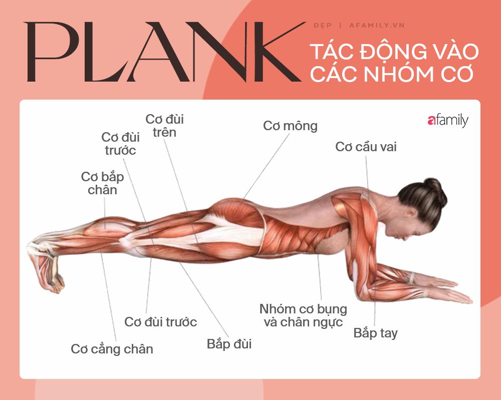 """Động tác Plank biến thể giúp săn cơ bụng, nâng vòng 3: Chị em có được body """"ngon nghẻ"""" chỉ với vài phút mỗi ngày - Ảnh 1."""