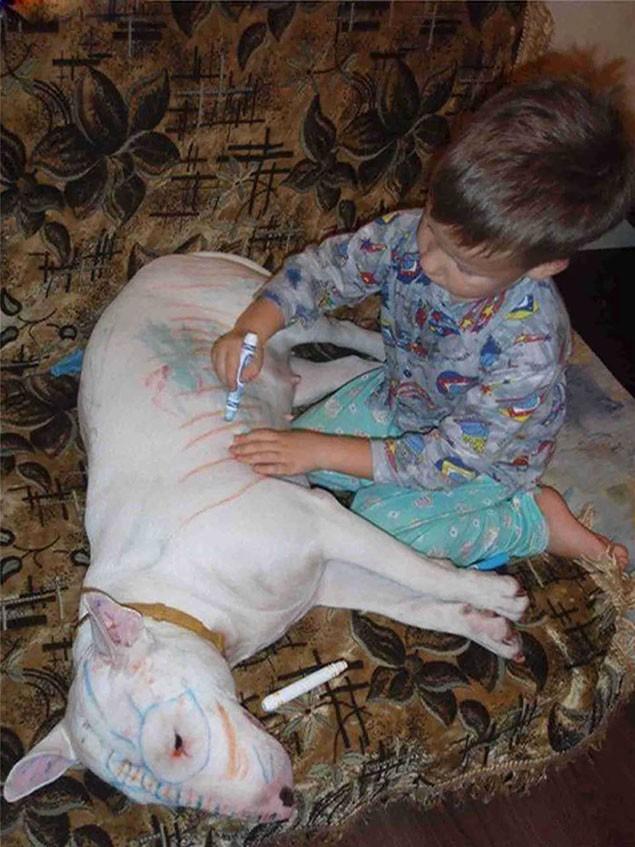 """Cô giáo yêu cầu vẽ mèo, cậu bé lập tức bế """"đại boss"""" lên bàn học và làm 1 hành động ngây ngô khiến ai cũng cười ngất - Ảnh 4."""