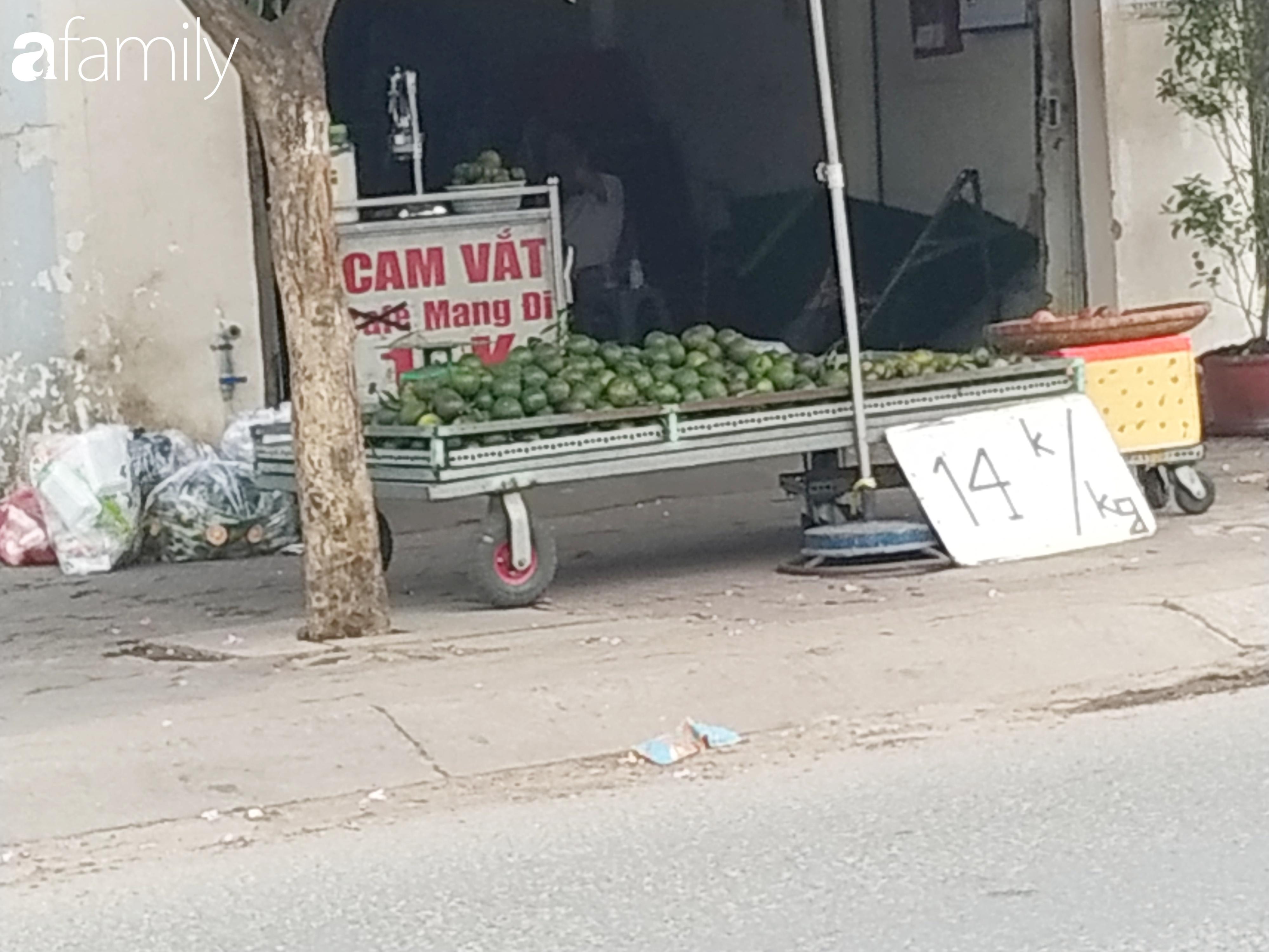 """Giá """"rẻ như cho"""" nhưng nhiều loại trái cây ở Sài Gòn vẫn mòn mỏi chờ khách - Ảnh 3."""