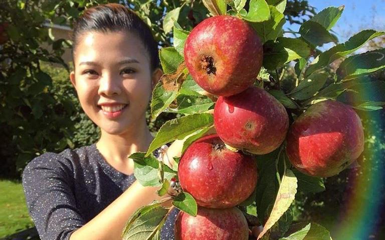 Chia sẻ về kinh nghiệm trồng rau của mẹ Việt