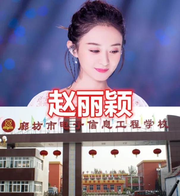 Học vấn diễn xuất của dàn Tiểu Hoa: Dương Mịch - Địch Lệ Nhiệt Ba cao quý, Angelababy - Triệu Lệ Dĩnh mãi bị chê cười - Ảnh 12.