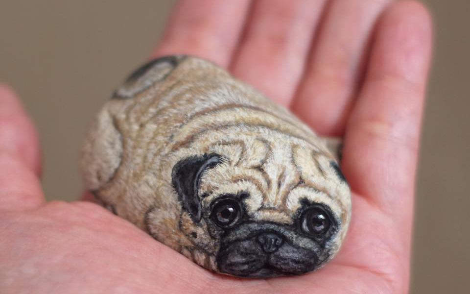"""Cư dân mạng trầm trồ khi nhìn thấy chú cún cưng nhỏ xíu lọt thỏm trong lòng bàn tay """"yêu không chịu được"""" nhưng biết sự thật thì ai nấy đều bất ngờ"""