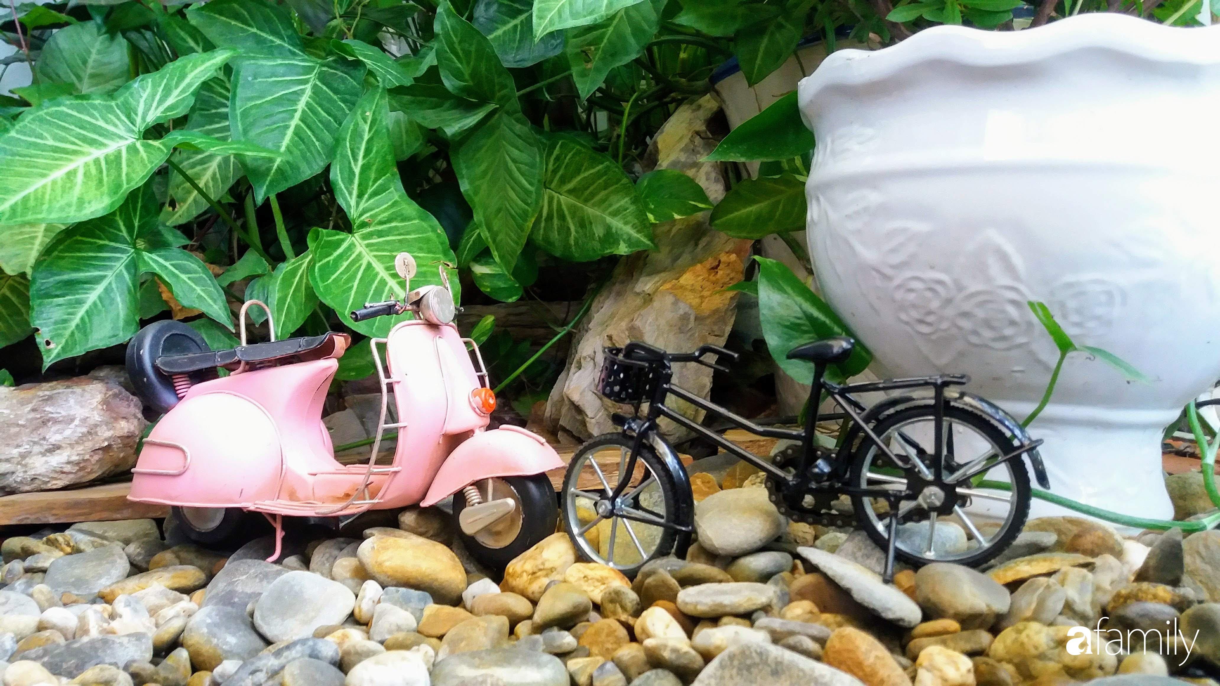 Ở nhà nghỉ dịch, chàng trai xứ Huế thảnh thơi bên ban công tự thiết kế với tiểu cảnh có hoa có cá phong cách nhiệt đới - Ảnh 12.