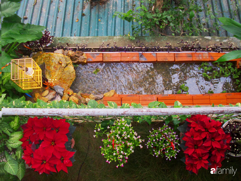 Ở nhà nghỉ dịch, chàng trai xứ Huế thảnh thơi bên ban công tự thiết kế với tiểu cảnh có hoa có cá phong cách nhiệt đới - Ảnh 5.