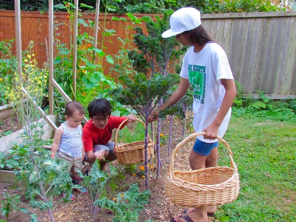 Bà mẹ 4 con dành cả thanh xuân để tạo lập khu vườn trồng cây ăn trái cùng đủ loại rau xanh - Ảnh 1.